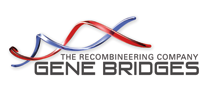 gene bridges logo